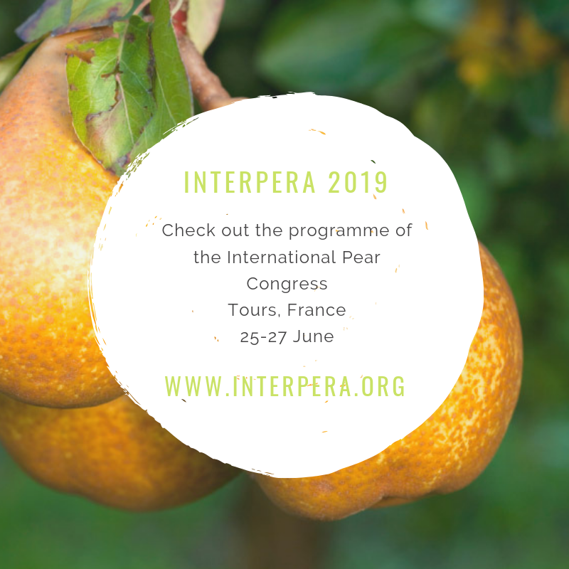 INTERPERA 2019 EN
