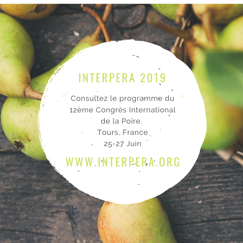 INTERPERA 2019 FR